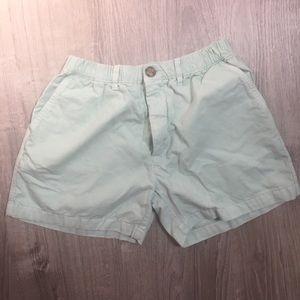 Mint Green Chubbies Shorts 5 Inch Inseam